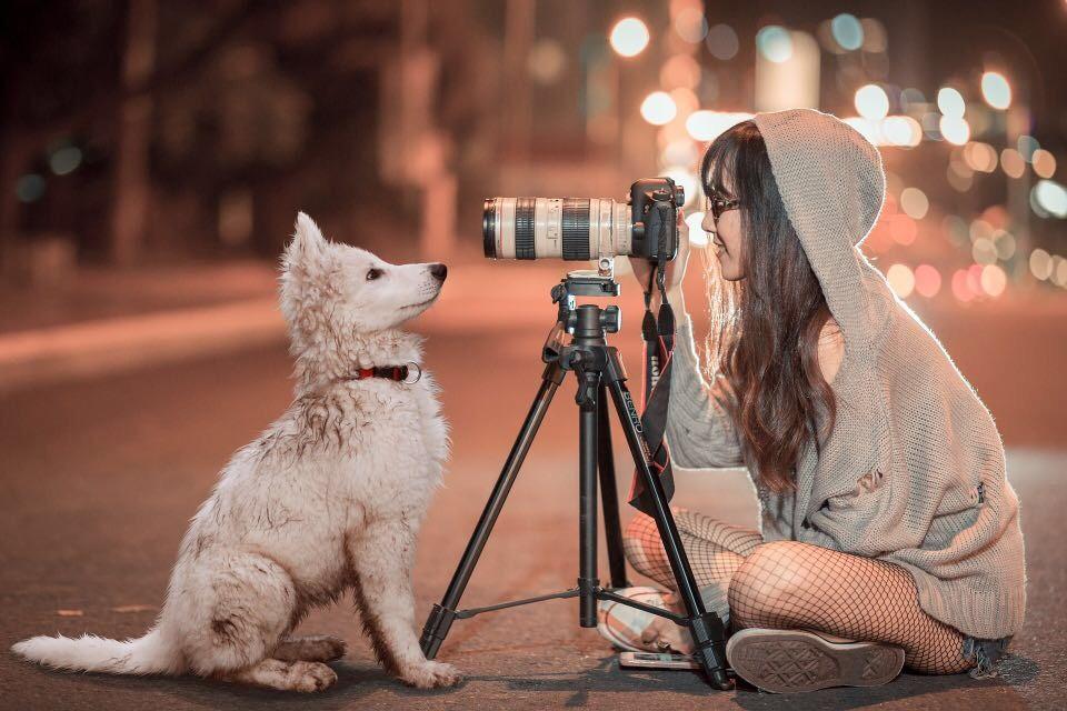 Köpek Sahiplenmeden Önce