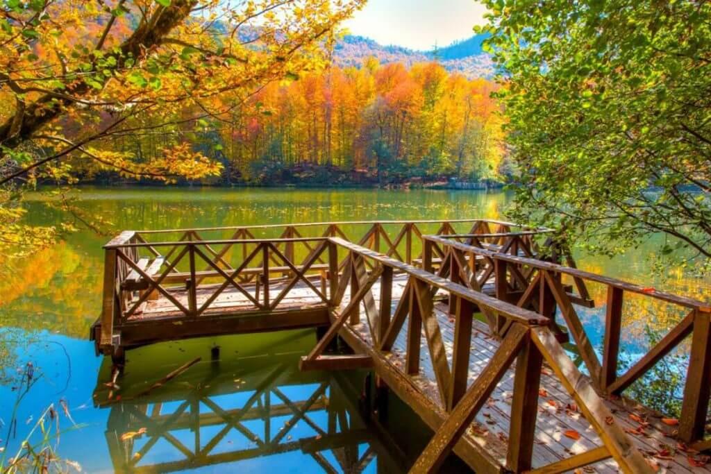Yedigöller Tabiat Parkı